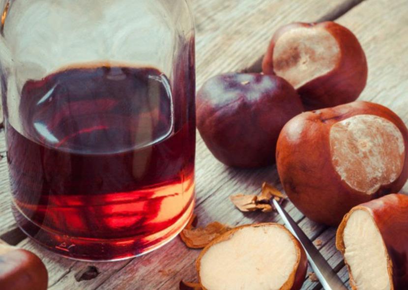 Настойка из каштана для суставов: рецепт приготовления и польза для здоровья. Настойка из плодов каштана от варикоза. Конский каштан: настойка на водке