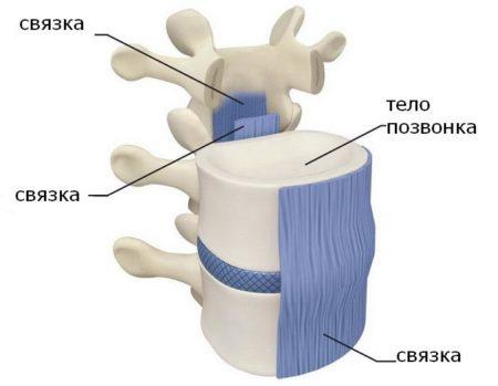 Трентал при остеохондрозе шейного отдела отзывы