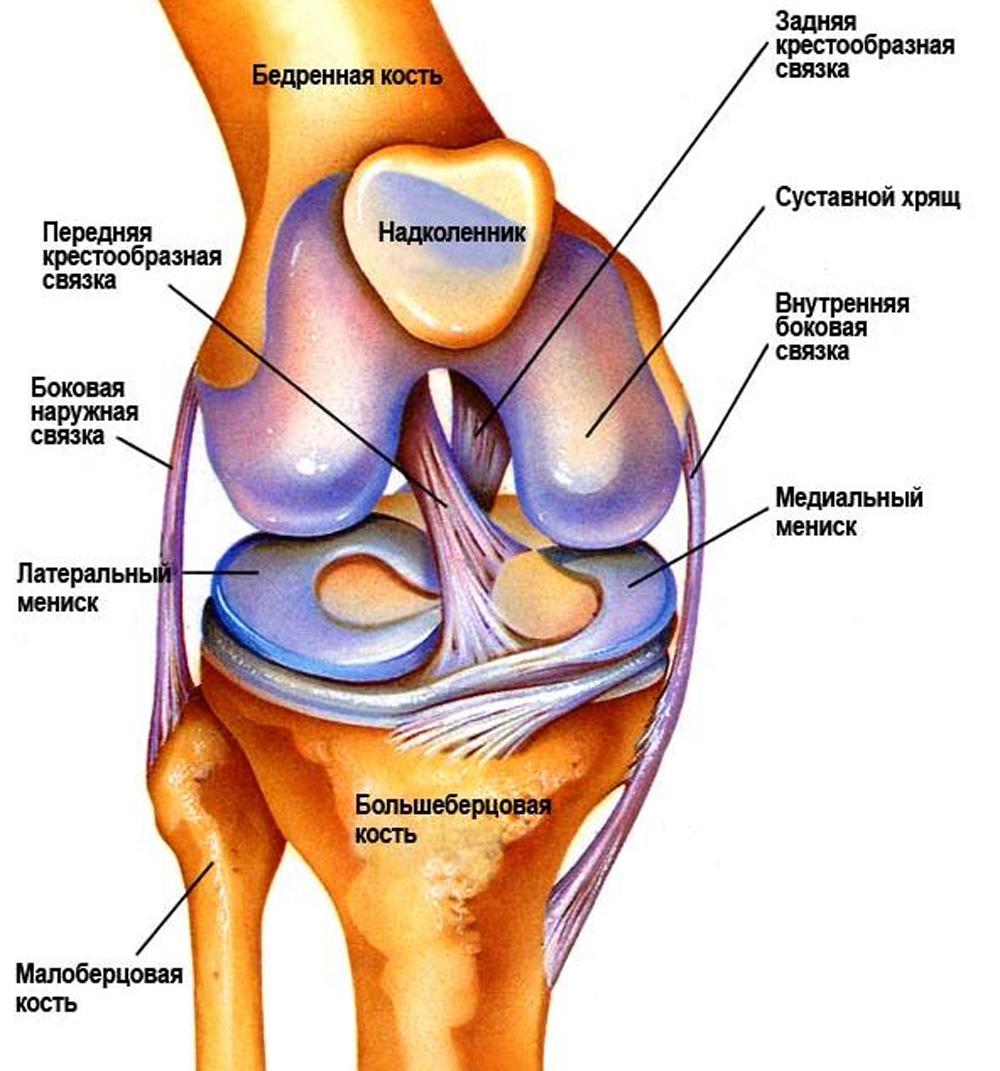 Тейпирование коленного сустава при артрозе