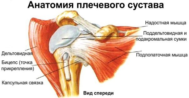 Пункция плечевого сустава показания