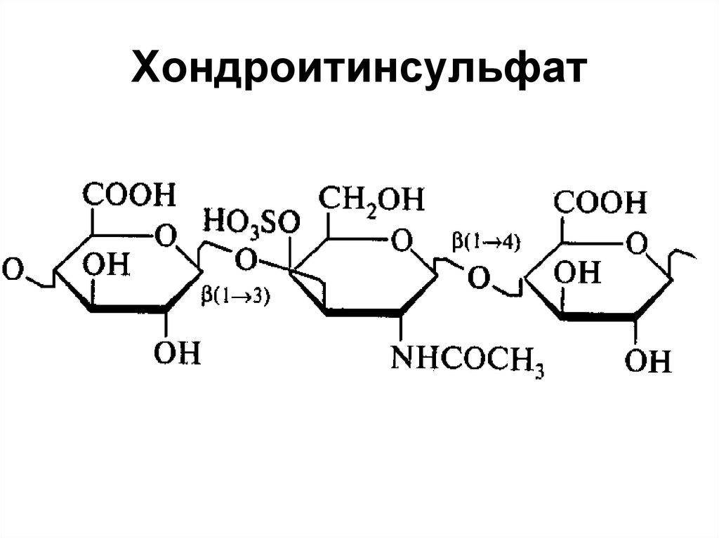 Продукты содержащие глюкозамин и хондроитин — Сайт о лечении заболеваний суставов