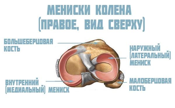 Дегенеративные изменения менисков коленного сустава патологии